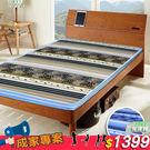 床墊 雙人床墊 冬夏 仿藤椰絲 可折疊 雙面 (兩色)