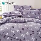 天絲 Tencel 艾莉亞 床包冬夏兩用被 加大四件組  100%雙面純天絲 伊尚厚生活美學