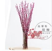 招財銀柳 年宵花卉銀柳彩色銀柳鮮枝真花冬季花卉室內裝飾干花放可水養植物T 多款