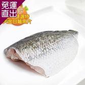 那魯灣 台灣嚴選特大金目鱸魚片2片500g/片【免運直出】