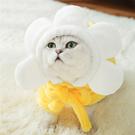 網紅搞怪搞笑小貓咪衣服防掉毛秋冬裝保暖加厚幼貓寵物藍貓秋冬季