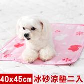 【奶油獅】雪花樂園-長效型冰砂冰涼墊/小寵物涼墊40x45cm粉色二入