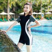 新品運動款專業泳衣女保守連體游泳衣女大碼