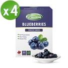Frenature富紐翠-藍莓翠鮮果凍乾 20g (冷凍真空乾燥水果乾) 4盒組
