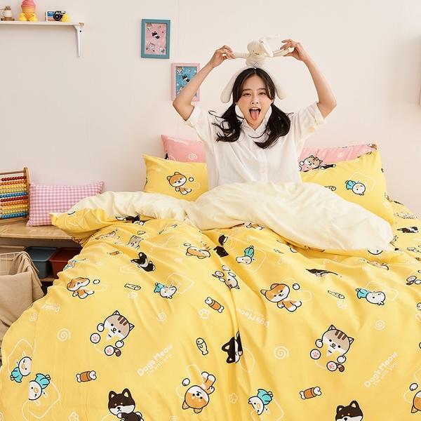 被套 / 雙人【逗柴貓黃】磨毛多工法處理,戀家小舖台灣製 柴犬 貓