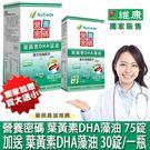( 買大送小)營養密碼 葉黃素DHA藻油...