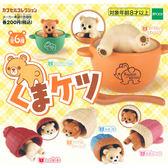 全套6款【日本正版】小熊屁屁造型 擺飾 扭蛋 轉蛋 熊熊屁股 EPOCH - 617590