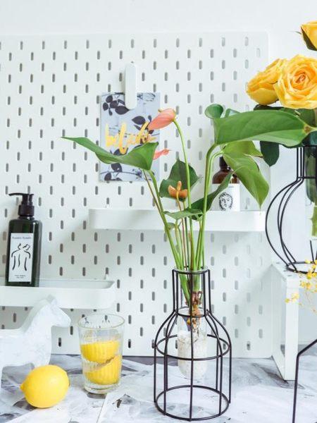 北歐風格綠蘿水培鐵藝花瓶擺件ins客廳鮮花插花干花小清新裝飾品 卡布奇诺HM