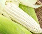 [COSCO代購] W156424 產銷履歷水果玉米 5公斤