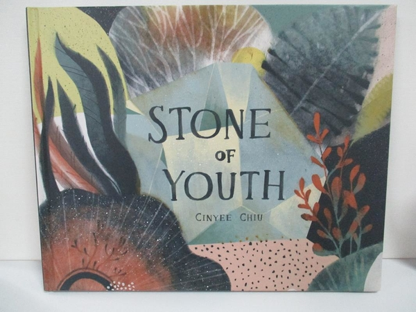 【書寶二手書T2/少年童書_DXN】Stone Of Youth