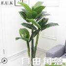 仿真植物盆景防真花客廳花假樹裝飾室內擺件大型綠植滴水觀音盆栽 自由角落
