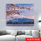 數字油畫 diy數字油畫畫畫diy油彩畫風景花卉手工繪填充涂色客廳大幅富士山 米家WJ