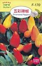 [五彩辣椒種子] 各式觀賞花卉種子 香草種子 蔬菜水果種子 . 單買種子。郵局運費40元起