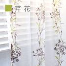 Dazo設計紗簾-芹花 寬140cm×高...