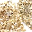 『晶鑽水晶』天然黃水晶粒 黃水晶滾石 黃水晶碎石 A級 200 及 250公克裝