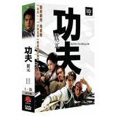 大陸劇 - 功夫狀元DVD (全35集/5片裝) 浦葉棟/黃聖依/吳孟達