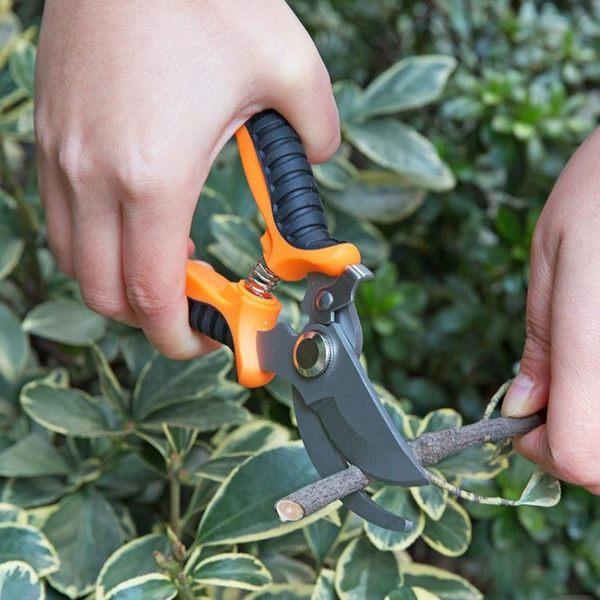 [超豐國際]園林樹枝剪刀園藝植物粗枝剪 園林工具剪花木修枝剪果樹