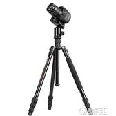 三腳架套裝單眼相機佳能200D 800D尼康D5300 D7200索尼A7m2三角架可拆獨腳架反折攝影便攜自WD 電購3C