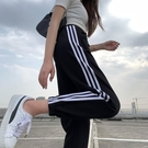 潮流女褲 灰色運動褲女夏季薄款寬鬆束腳九分顯瘦百搭純棉直筒跑步休閒衛褲