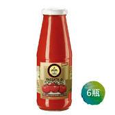 6瓶特惠 智慧有機體 義大利有機原味蕃茄濃汁 700g/瓶
