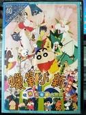 挖寶二手片-B05-正版DVD-動畫【蠟筆小新:搞怪遊樂園大冒險/劇場版】-國語發音(直購價)海報是