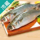 烏魚(去卵)1~1.2kg/尾【愛買冷藏】