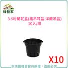 【綠藝家】3.5吋蘭花盆(黑吊耳盆.洋蘭...