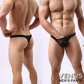 情趣用品-內褲 含滋潤液VENUS 蕾絲 性感情趣 透明男丁字褲 黑色 T063 男性情趣平口內褲