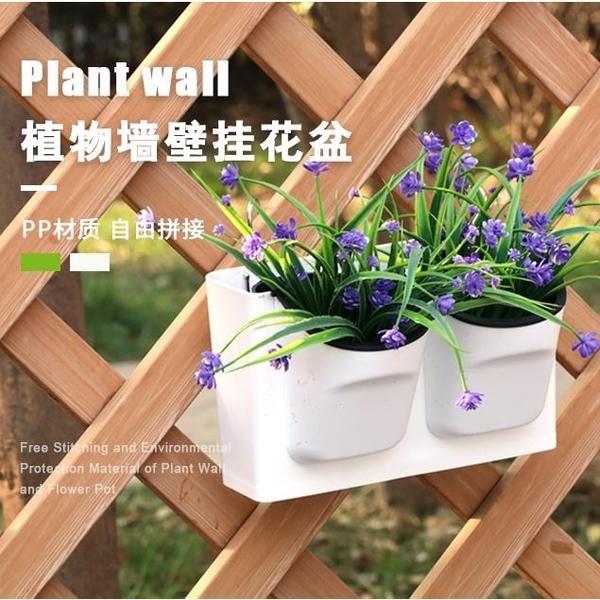 懶人吸水盆掛墻多肉綠蘿培盆栽塑料花盆