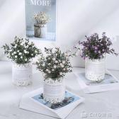 仿真植物假草盆栽擺件設北歐綠植盆景客廳室內裝飾滿天星小花YYP  ciyo黛雅