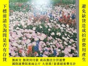 二手書博民逛書店TEXAS罕見IN BLOOM: PHOTORAPHS FROM