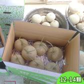 阿露斯洋香瓜-綠肉10公斤(12-14顆)