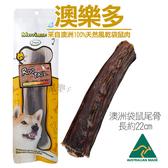 【寵樂子】《澳洲澳樂多》100%天然風乾袋鼠尾骨 單根 / 狗零食
