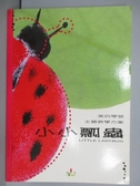 【書寶二手書T9/美工_PNI】美的學習主題教學方案-小小瓢蟲