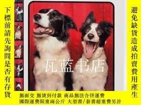 二手書博民逛書店小狗攝影罕見Tails from the Booth 狗狗拍照Y