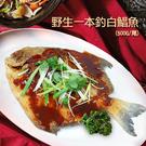 【屏聚美食】頂級現撈一本釣野生白鯧魚(已去肚淨重约500g/尾)