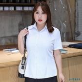 加肥加大大碼2020新款白色襯衫女v領短袖胖mm200斤正裝藍襯衣上班工裝職業 OO11763【pink領袖衣社】