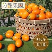 沁甜果園SSN.錦珠番茄5斤/盒.預購﹍愛食網