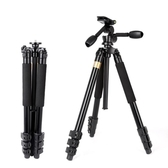單反三腳架 相機專業DV攝影攝像機三維云臺三角架 BF13100『男神港灣』