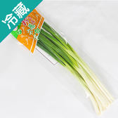 珍品青蔥1包(120g±5%/包)【愛買冷藏】