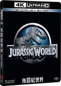 【停看聽音響唱片】【BD】侏羅紀世界 平裝膠盒『4K』