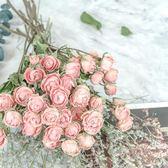 浪漫泡泡天然淺粉玫瑰少女心乾花花束薔薇花小清新ins風家居擺件   琉璃美衣
