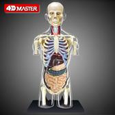4DMASTER益智拼裝拼插玩具人體器官4dmaster半身模型內臟拼裝模型 城市科技DF