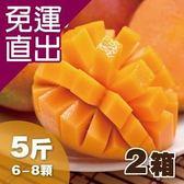 沁甜果園SSN. 台南愛文芒果(6-8粒裝/5台斤)(共2箱)E00900067【免運直出】