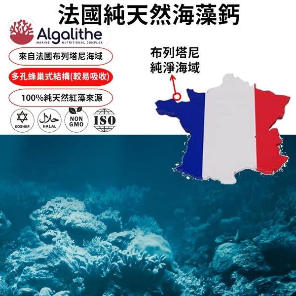 法國海藻鈣膠囊 鈣 鎂 維生素D 海藻 補鈣 鈣鎂片 機能保健 重點保健 銀髮 快速出貨