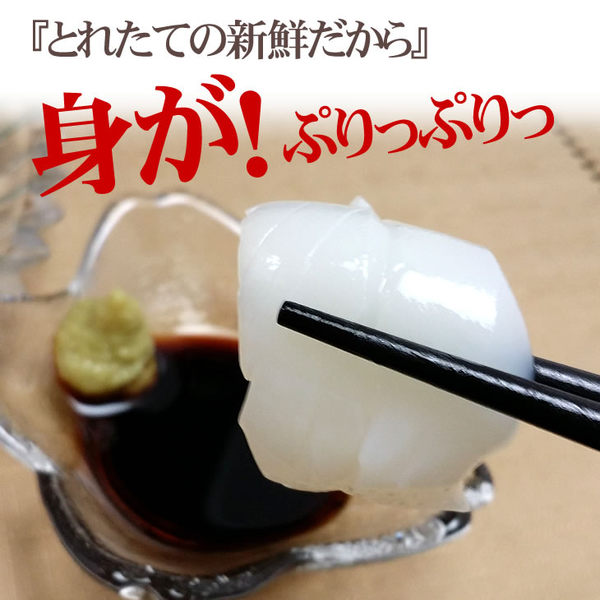 D3【魚大俠】SD002紋甲花枝生魚片(15片/200g/盤)Mongo Ika