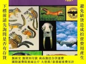二手書博民逛書店Peterson罕見Field Guide to Mammals