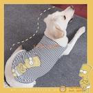 大狗狗衣服金毛搞衣服夏季透氣拉布拉多幼犬薩摩大型犬夏裝【小獅子】