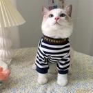 韓版IG狗狗貓貓衣服春秋薄款寵物貓網美英短小奶貓咪秋裝打底衫【小狮子】