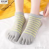 五指襪女 夏季五指襪女士薄款透氣短筒分腳趾純棉隱形短襪淺口全棉五趾襪子 芭蕾朵朵